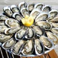 bivalvia fruits de mer crustaces moule fond d ecran